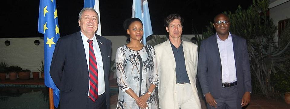 Farewell reception for the president of the France-Botswana Business (...)